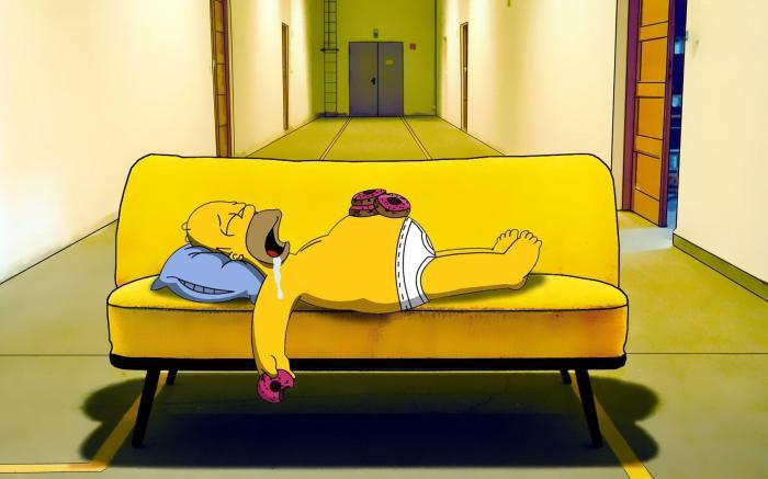 homer-simpson-sleeping